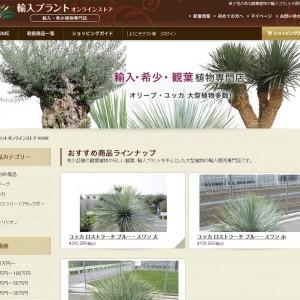 観葉植物 輸入販売 希少価値|輸入プラントオンラインストア